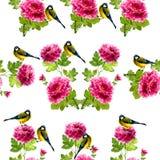Modello degli uccelli e di fiori dell'acquerello Fotografia Stock Libera da Diritti