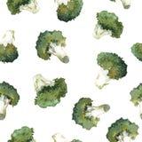 Modello dei broccoli dell'acquerello illustrazione vettoriale