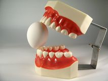 Modello dei denti Fotografie Stock Libere da Diritti