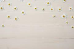 Modello dei fiori bianchi dell'ago spagnolo Immagine Stock Libera da Diritti