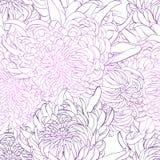 Modello dei fiori piony royalty illustrazione gratis