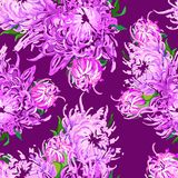 Modello dei fiori piony illustrazione di stock