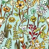 Modello dei fiori selvaggi Fotografia Stock