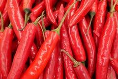 Modello dei peperoncini rossi Fotografia Stock Libera da Diritti
