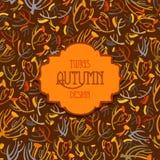 Modello dei ramoscelli del tanaceto Fondo marrone arancio di autunno Etichetta d'annata del testo Fotografie Stock