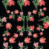 Modello dei tulipani dell'acquerello Fotografia Stock