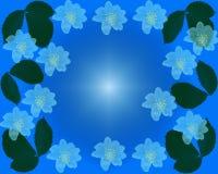 Modello del blu del fiore Immagini Stock