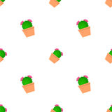 Modello del cactus Fotografia Stock