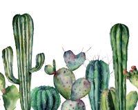 Modello del cactus dell'acquerello Ornamento senza cuciture disegnato a mano con le piante del deserto isolate su fondo bianco Ca royalty illustrazione gratis