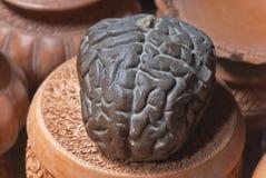 Modello del cervello Immagini Stock Libere da Diritti
