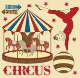Modello del circo Fotografia Stock