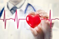 Modello del cuore 3D della tenuta del cardiologo Concetto con il cardiogramma Immagine Stock