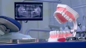 Modello del dente contro il contesto dei raggi x panoramici all'ufficio del ` s del dentista stock footage
