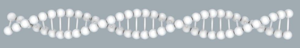 Modello del DNA illustrazione vettoriale