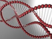 Modello del DNA riflesso illustrazione di stock
