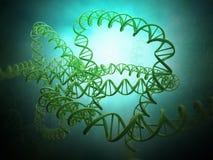 Modello del filo del DNA Fotografie Stock