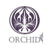 Modello del fondo del fiore Lotus Symbol marchio Immagini Stock Libere da Diritti