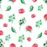 Modello del fondo dell'acquerello con le rose rosse ed i ramoscelli royalty illustrazione gratis