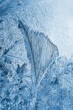 Modello del gelo Fotografia Stock Libera da Diritti
