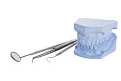 Modello del getto della protesi dentaria, insieme di strumenti dentale Fotografia Stock Libera da Diritti