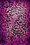 Modello del leopardo Fotografie Stock Libere da Diritti
