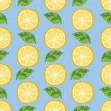 Modello 2 del limone Fotografie Stock