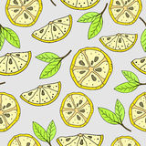 Modello del limone Fotografia Stock Libera da Diritti
