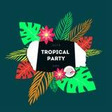 Modello del manifesto del partito tropicale Fotografia Stock Libera da Diritti