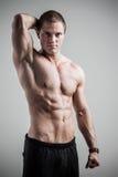 Modello del maschio di forma fisica Immagini Stock