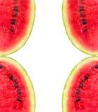 Modello del melone isolato sulla vista bianca del fondo dalla cima Fotografia Stock Libera da Diritti