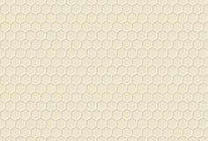 Modello del miele dell'ornamento decorativo Immagine Stock