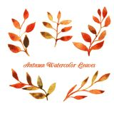 Modello del modello della foglia dell'acquerello di autunno di vettore Fotografia Stock