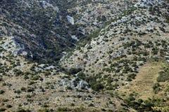 Modello del paesaggio in Croazia Fotografia Stock Libera da Diritti