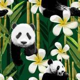 Modello del panda e dei fiori illustrazione vettoriale