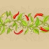 Modello del peperoncino di cayenna Fotografia Stock