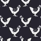 Modello del pollo di Bnw Immagine Stock