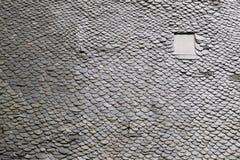 Modello del tetto Fotografie Stock Libere da Diritti