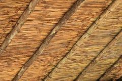 Modello del tetto di Straw Hut Fotografia Stock