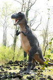 Modello del tirannosauro Rex Dinosaur Outdoors fotografia stock libera da diritti