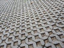 Modello del verme del mattone Fotografie Stock Libere da Diritti