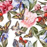 Modello dell'acquerello con le belle farfalle e Fotografie Stock Libere da Diritti