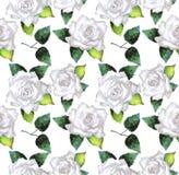 Modello dell'acquerello con le rose Immagini Stock