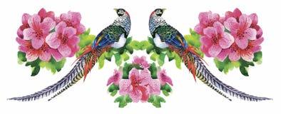 Modello dell'acquerello dei fiori del giardino e degli uccelli del fagiano royalty illustrazione gratis