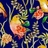 Modello dell'acquerello Tropicale e fiori uccello dell'Bianco-occhio, camelia Vettore Immagine Stock