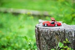 Modello dell'automobile sportiva nel posto della natura Fotografie Stock