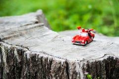 Modello dell'automobile sportiva nel posto della natura Fotografia Stock Libera da Diritti