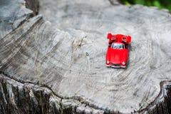 Modello dell'automobile sportiva nel posto della natura Immagine Stock Libera da Diritti