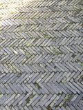 Modello dell'estratto del lastricatore del giardino Immagine Stock