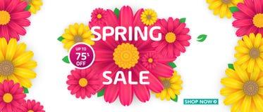 Modello dell'insegna di vendita della primavera con il bello fiore variopinto su fondo rosa, per la vendita di compera Progettazi fotografie stock