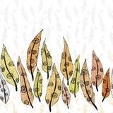 Modello dell'ornamento delle piume Fotografie Stock Libere da Diritti